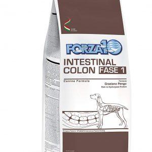 Forza 10 Intestinal Colitis Fase I 10kg